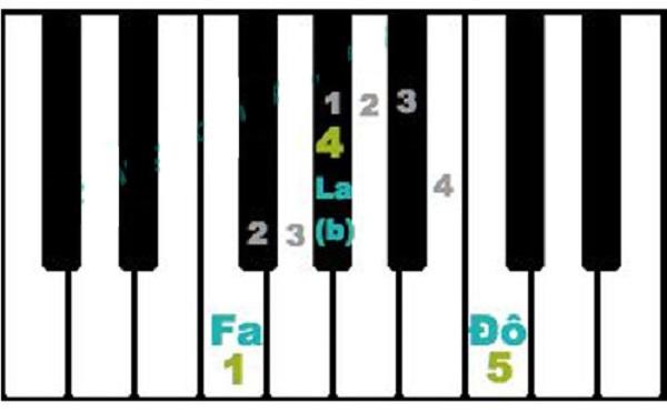 Hợp âm organ