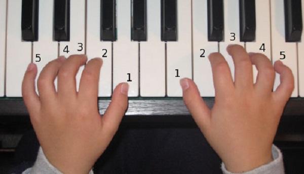Hợp âm piano là gì? Cách đánh đàn piano cho người mới bắt đầu
