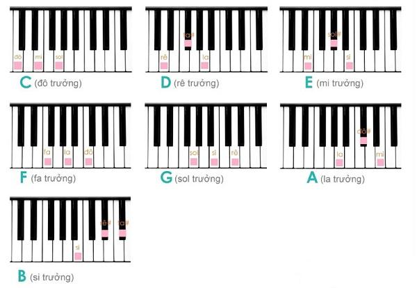 Hợp âm piano là gì? Cách đánh hợp âm piano đơn giản nhất
