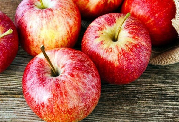 Thực phẩm tốt cho phổi phòng ngừa bệnh hô hấp