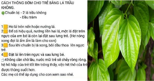 cach-thong-dom-cho-tre-bang-la-trau-khong